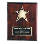 Star Plaque Achievement Awards