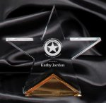 Gold Spectra Star Award Achievement Awards