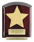 Star Dome Corporate Plaques Stand Arch Awards