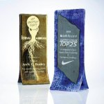 Double Fusion Artistic Glass Awards