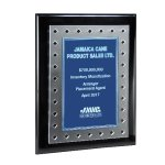 Frosted Lucite on Black Piano Plaque and Color Plate Employee Awards