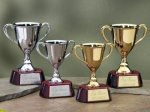 Trophy Cups with Piano Finish Wood Base Employee Awards