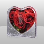 Elegant Rose Plaque Heart Awards