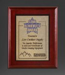 Cherry Finish Panel; Gold Tone Plate Religious Awards