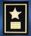 Acrylic Plaque with Brass Star Sales Awards