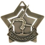 Gymnastics Star Star Awards